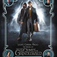 Os Crimes de Grindelwald - Livros para colecionar